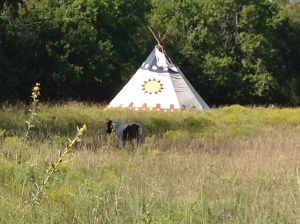 Tipi in the South Meadow